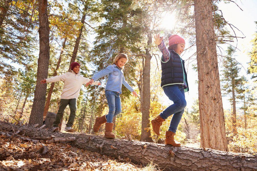 Children Having Fun And Balancing On Tree In Fall Woodland