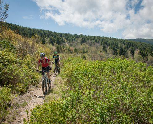 best mtb trails