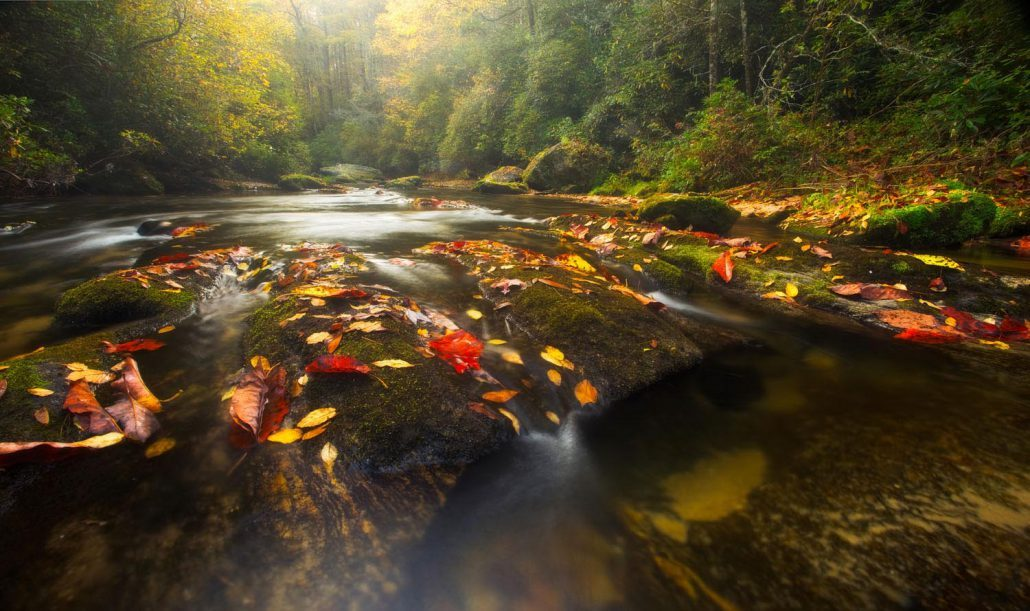 fall-leaves-waterfalls