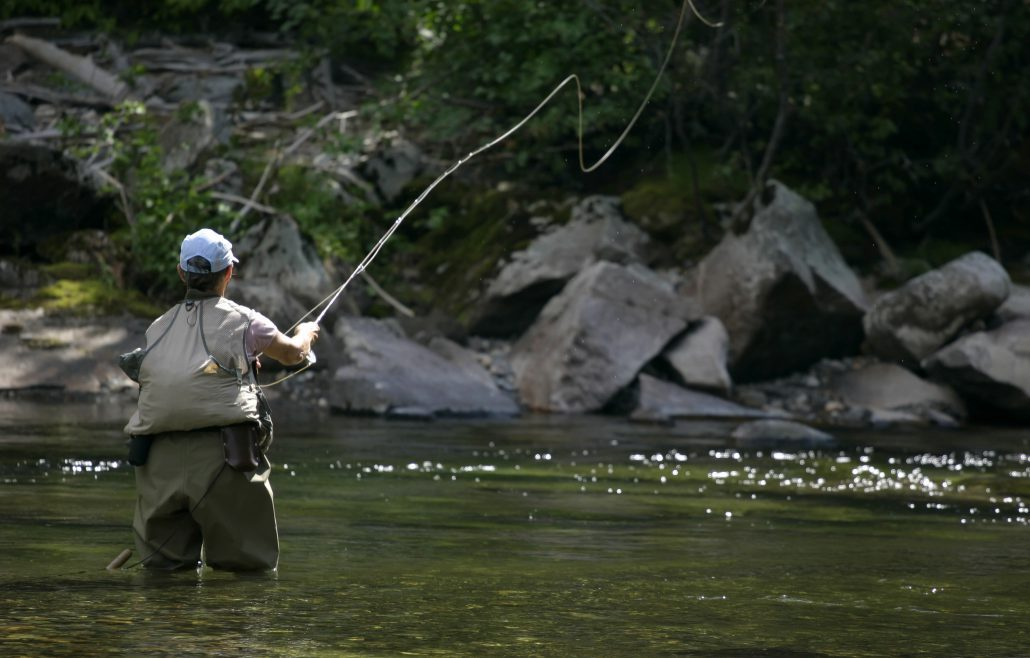 Fly fishing on the davidson river pilot cove pisgah for Davidson river fly fishing