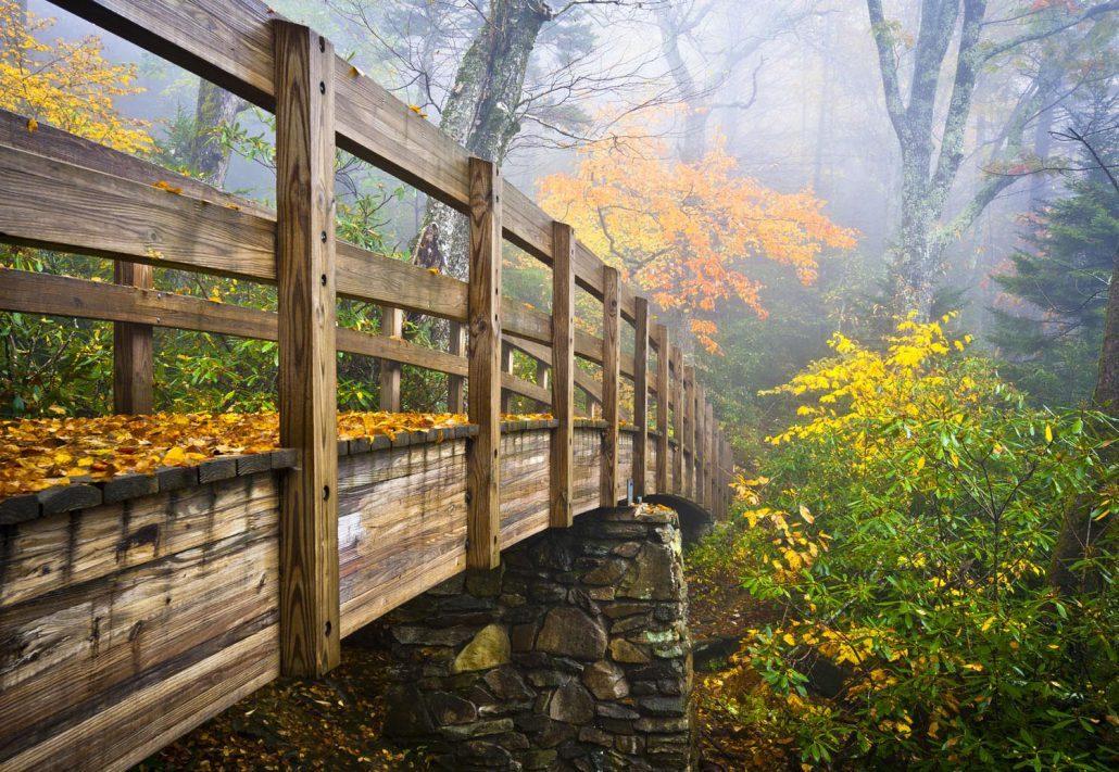 hiking bridge in Brevard